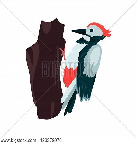 Woodpecker Flat Icon. Colored Vector Element From Birds Collection. Creative Woodpecker Icon For Web