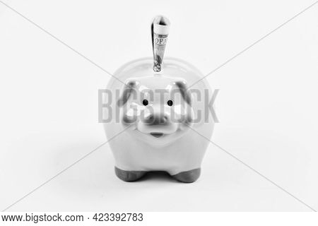 Banking Account. Earn Money Salary. Money Budget Planning. Financial Wellbeing. Piggy Bank Pink Pig