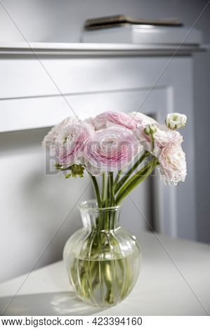 The Bouquet Of Pale Pink Persian Buttercups In The Glass Vase On The Table Against The Background Of
