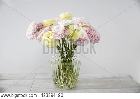 The Bouquet Of Pale Pink And Yellow Persian Buttercups In The Glass Vase On The Table Against The Gr