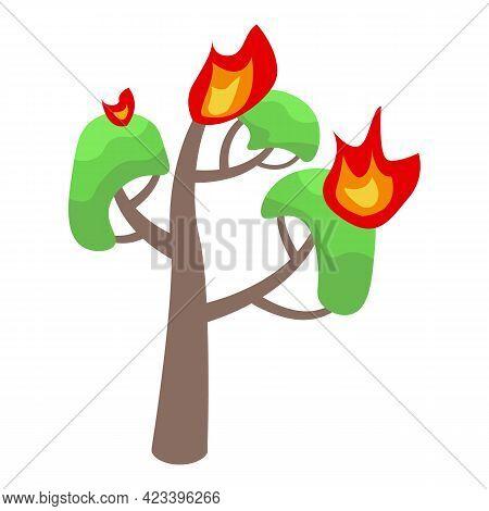 Burning Oak Icon. Isometric Of Burning Oak Vector Icon For Web Design Isolated On White Background