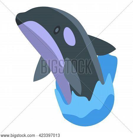 Killer Whale Dangerous Icon. Isometric Of Killer Whale Dangerous Vector Icon For Web Design Isolated