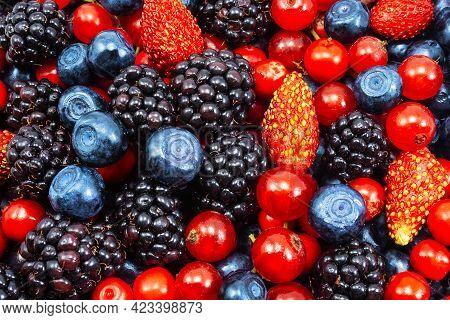 Background Of Fresh Summer Berries. Ripe Blackberries, Blueberries, Strawberry And Raspberries. Top