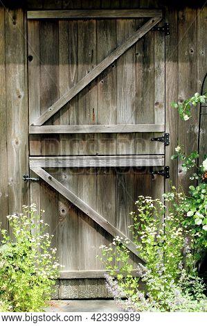 Well Built Wooden Shed Door Sitting In A Flower Garden.