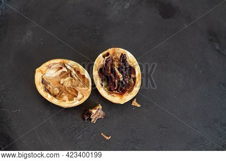 Rotten Walnut With Black Background. Dried And Spoiled Walnut Kernel.