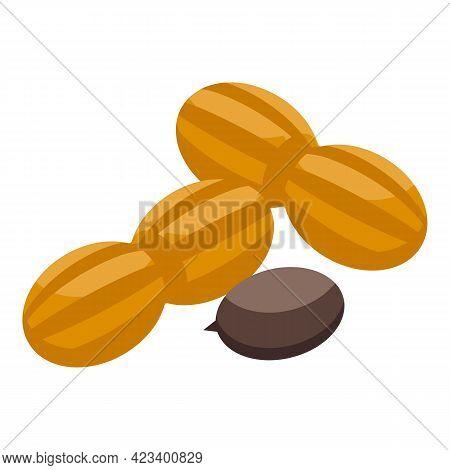 Hazelnut Protein Icon. Isometric Of Hazelnut Protein Vector Icon For Web Design Isolated On White Ba