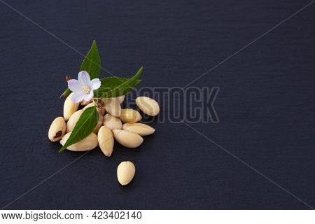 A Small Pile Of Peeled Almonds And A Blooming Sprig Of Decorative Almonds On A Black Background