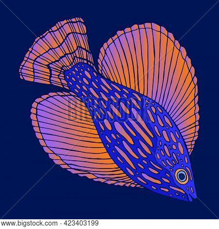 Decorative Colorful Fish Sea Animal With Bright Fins Orange Magenta Gradient Color, Isolated On Dark