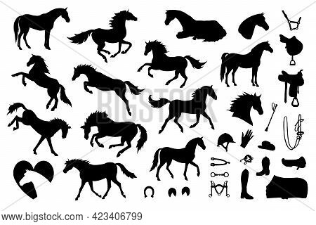 Vector Set Bundle Of Hand Drawn Horse And Equestrian Equipment Silhouette Isolated On White Backgrou