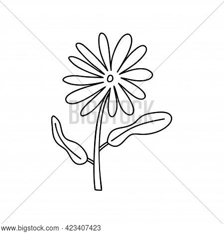 Monoline Vector Stylized Spring Flower. Scandinavian Style Illustration Art Element. Decorative Summ