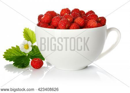 Berry wild strawberry in cup with green leaf and flower. Fruity still life. Healthy eating. Isolated on white background.