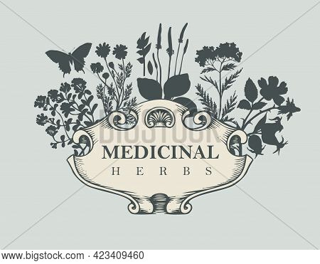 Vector Banner Or Label With The Words Medicinal Herbs. Vintage Frame With Medicinal Plants In Retro