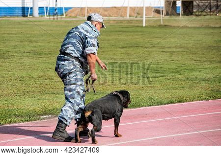 A Police Officer Training A Sniff Dog For Finding Drugs, Weapons, Explosives.