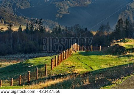 Russia. South Of Western Siberia, Mountain Altai. Lit By The Morning Dawn Sun, A Wooden Fence On Pas
