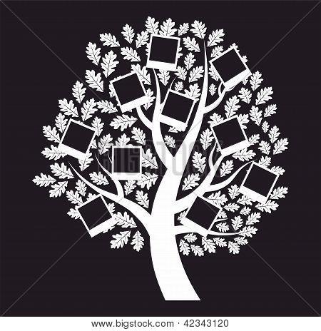 Árvore genealógica família sobre fundo preto, ilustração vetorial