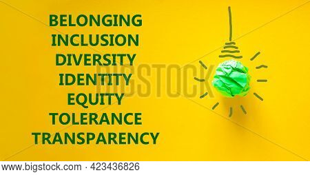Diversity Inclusion Belonging Equity Identity Tolerance Transparency Words Written On Beautiful Yell