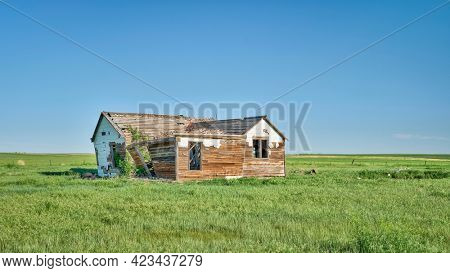 old abandoned homestead on eastern Colorado prairie - Pawnee National Grassland in late spring or early summer