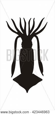 Squid, calamary. Black silhouette vector illustration isolated on white background. The sister group to the octopus.