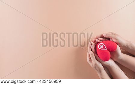 Medical And Donor Concepts. Hand Holding A Handmade Red Heart, A Sign Or Symbol Of Blood Donation Fo