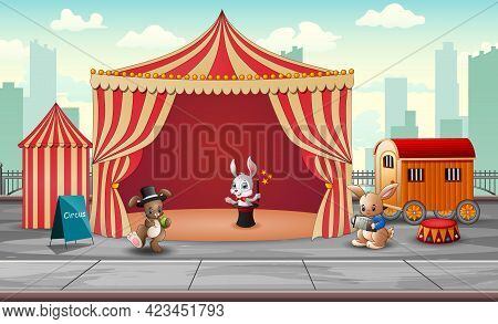 Circus Animal Show And Acrobat Performance At The Arena