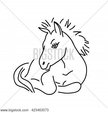 Black Outline Hand Drawing Vector Illustration Of A Little Horse Lying On A Grass Isolated On A Whit