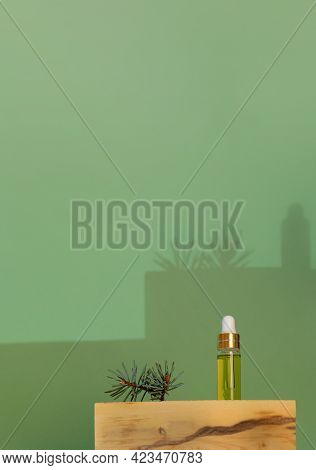 Minimalist Composition With Small Glass Bottle Of Essential Spruce Oil And Twig On Boxwood Stand Wit