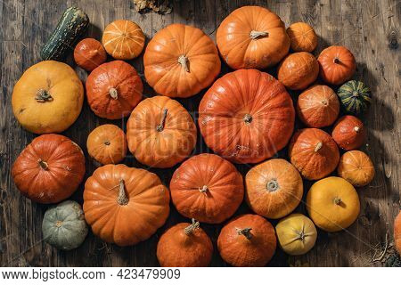 Pumpkins For Halloween Lie On Wooden Floor Covered With Hay And Leaves In Dark Old Barn, Festive Dec