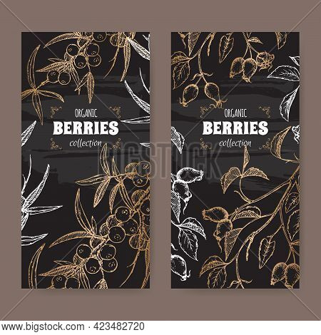 Set Of Two Labels With Dog Rose And Common Sea Buckthorn Branch Sketch On Black. Berry Fruits Series