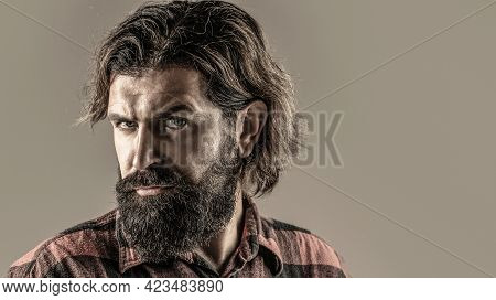 Handsome Bearded Businessman. Portrait Of Handsome Bearded Man In Suit. Male Beard And Mustache. Sex