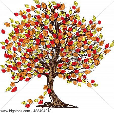 Drawing Of Deciduous Tree In Windy Autumn Season