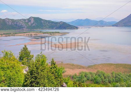 Beautiful Wetland Landscape. Montenegro, Skadar Lake National Park. View Of Lake Skadar On Spring Da