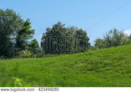 Beautiful Natural Vegetation Hilly Landscape On A Sunny Summer Day