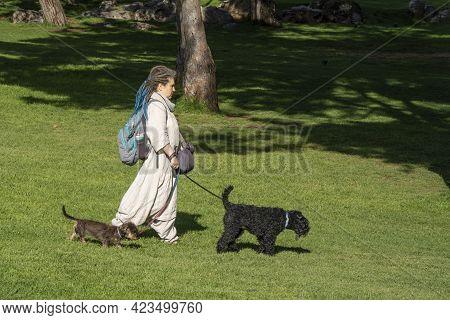 Jerusalem, Israel - June 3rd, 2021: A Woman Walking Her Two Dogs In A Jerusalem, Israel, Park, On A