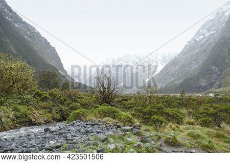 Natural Scenery Around Around Te Anau At The South Island Of New Zealand
