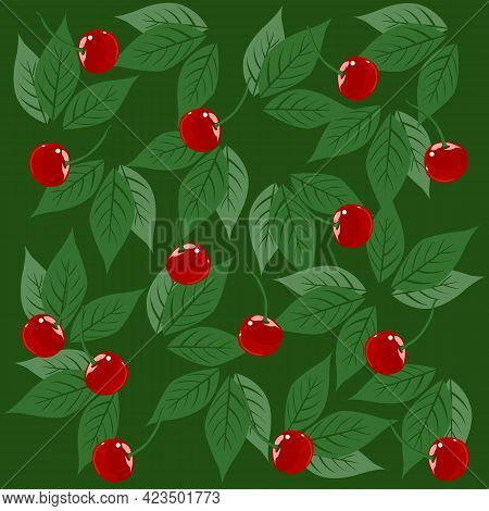 Cherry Branch With Leaves And Ripe Bright Berries, Vector Illustration