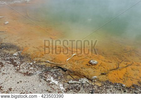 Detail Of The Champagne Pool At A Geothermal Area Named Waiotapu In New Zealand
