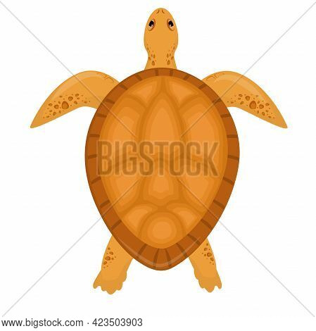 Vector Illustration Of A Sea Turtle Isolated On A White Background