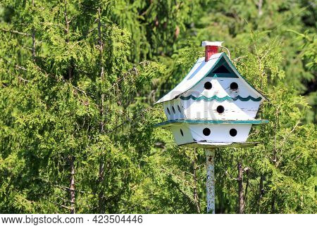 Bright White Green And Red Birdhouse Bird Shelter Standing Tall In A Lush Rural Wooded Backyard