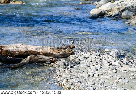 A Rushing River Riverbed Rapids With Trees And Rocks With Bright Overhead Sunny Sky Reflections And