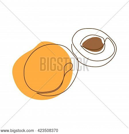 Drawn By A Solid Dark Line An Apricot And A Half Of An Apricot On A Background Of Abstract Orange An