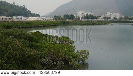 Mountain and sea in Tai O