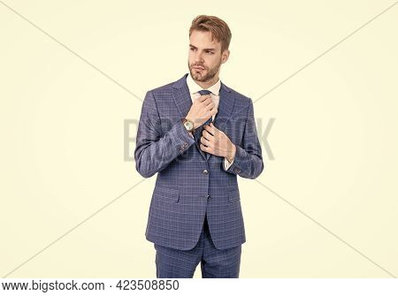 Handsome Professional Wear Classic Blue Suit And Tie Formalwear, Dressing For Success.