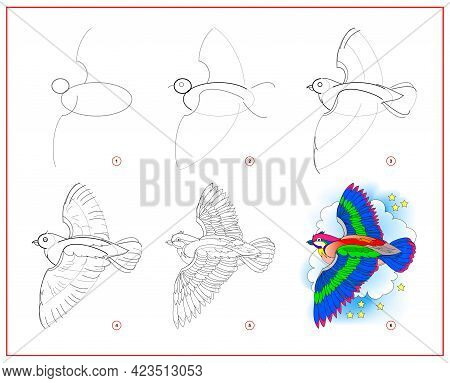 How To Draw Cute Flying Bird. Educational Page For Children. Creation Step By Step Animal Illustrati