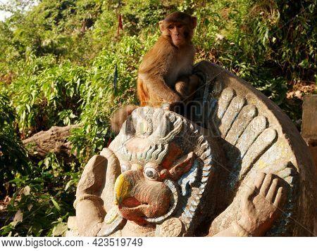 Sculpture Carving Stone Figure Garuda Or Galon Or Nan Belu Guardian At Ancient Antique Of Swayambhun