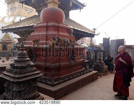 Tibetan Monks Travel Visit Respect Praying Stupa Buddha Deity God Statue And Looking Monkey Playing