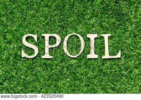 Wood Letter In Word Spoil On Green Grass Background