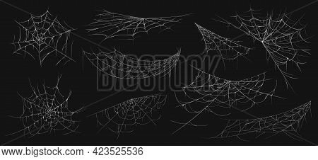Realistic Spider Web. Scary Cobwebs. Isolated Insect Nets. Halloween Decoration Line Elements Set. A