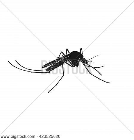 Realistic Vector Mosquito Icon. A Remedy For Insect Bites. Bloodsucker