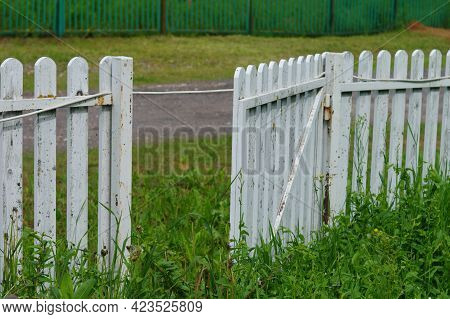 Abandoned Open Door In A Fence, Overgrown With Plants