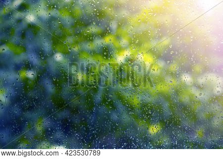 Raindrops. Wet Window Glass After The Rain. Sunlight In The Corner Of The Fram. Leaves Of Trees Out